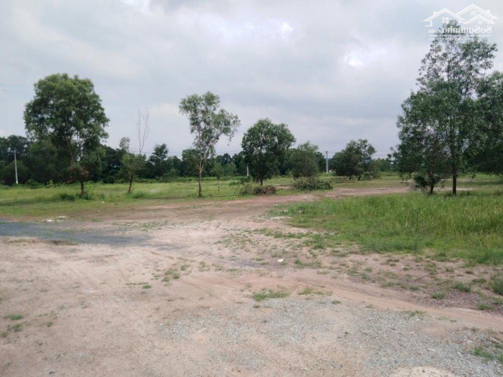 Bán đất, nhà xưởng khu công nghiệp Giang Điền Trảng Bom Đồng Nai