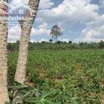 Bán Lô Đất 368M2 Giá 399Tr Điện Nước Giếng Khoan.huyện Lâm Hà , Lâm Đồng