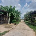 Nhà Kho Phú Tân 293M2 (7×42M) Cạnh Toà Nhà 6 Sở