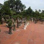 Cần Bán Lô Đất Vườn 3600M2 Quảng Thanh
