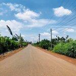 Đất1000M2 400 Triệu Ngân Hàng Hỗ Trợ50% Trảng Bom