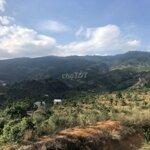 Đất Chính Chủ Cần Bán 7986M2 Đông Thanh, Lâm Hà