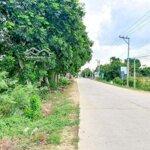 Bán Đất Phước Thuận 1944M2 Có Sổ