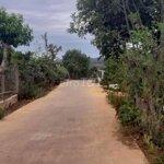 300M Mặt Đường Betong, Giáp Suối- Nam Ban Lâm Hà