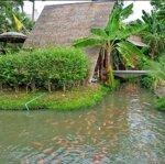 Chủ Cần San Miếng Đất Vườn 800M2 Tại Huyện Củ Chi