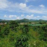 Bán Đất Làm Khu Nghỉ Dưỡng Ở Bảo Lộc - Lâm Đồng