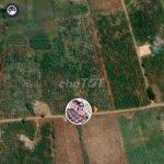 Đất Tại Xã Tân Hà, Lâm Hà 15000M2