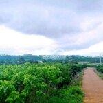 Bán 3.200M Đất Mặt Tiền Đường Ven Hồ Phúc Thọ, Lâm