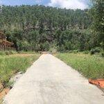 Bán Nhanh Lô Đất Lãm Trại - Giá Cực Sốc Chỉ 700 Triệu Đồng