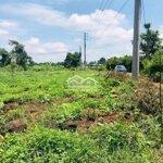 Đất Vườn Trảng Bom 1050M2, Vay Dc Ngân Hàng 400Tr
