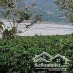 3 Tỷ Bạn Đã Sở Hữu Ngay 2 Ha Đất Giáp Sông Đồng Nai Tại Liên Hà, Lâm Hà, Lâm Đồng
