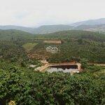 7,5 Hecta (75.000M2) Đất Mê Linh, Cách Mê Linh Coffee Garden 1,5Km, Cách Trung Tâm Đà Lạt 15Km