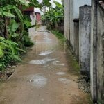 Bán Dãy Nhà Trọ Tại Hoa Động Thủy Nguyên