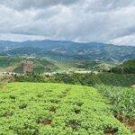 Đất Biệt Thự Vườn Giá Rẻ Ven Đà Lạt, Mê Linh, Đông Thanh, Nam Ban (Lâm Hà)