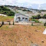 Đất Phân Lô Lạc Dương 192M Giá Bèo Nhèo