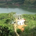 Chính Chủ Bán Đất Ven Hồ Thủy Điện Đồng Nai 2 - Đất Trồng Cây Lâu Năm - Diện Tích 2,4 Ha