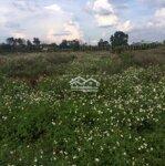 Đất Làm Trang Trại Cách Pleiku 30Km
