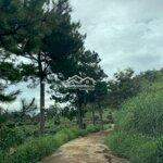 Đất Huyện Lâm Hà 500M²