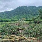 Bán Mảnh Đất Nhỏ Oto Tận Nơi Gần Yangbay