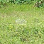 Đất F8 Nguyễn Văn Lâu 126M2