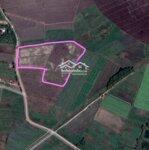 Cần tiền gấp bán đất lớn giá rẻ chỉ `1.1 triệu/m2. Liên hệ: 0986028548 gặp anh Hoang