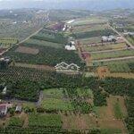 Chỉ 370 Triệu Cho 120M2 Gần Ngã 5 Đambri,Bảo Lộc