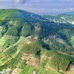 Cần Bán Mảnh Đất Đông Thanh Lâm Hà