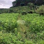 Bán Đất Mê Linh 6300M2 Giá 3.5 Tỷ View Siêu Đẹp