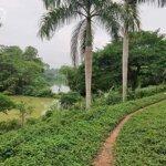 Đất Nhà Vườn 3624M Đất Đồng Trạng Cổ Đông, View Hồ Đỉnh Cao.