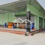 Mặt Bằng Kinh Doanh Huyện Cần Đước 40M²