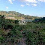 919M2 Đất Vườn Dựng Nhà Gỗ Nghỉ Dưỡng, View Đẹp