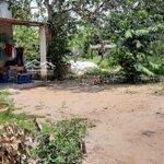 Cần Tiền Làm Ăn Vừa Bán Vừa Cho Lô Đất Nn 32.918M2
