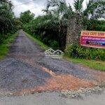 Cơ Hội Sở Hữu Đất Nền Giá Rẻ Tại Tp Hcm Giá 750 Tr