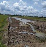 Bán 2 công đất, 750 triệu cho lên thổ cư. Lộ 2m