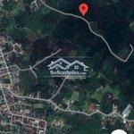 Đất Cà Phê Tại Hẻm 208, Nguyễn Văn Cừ, Lộc Phát