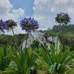 Bán Đất Dự Án Langbiang Town Chỉ 2 Tỷ/Lô - Khu Đô Thị Đáng Sống Nhất Đà Lạt