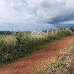 Bán 4,4 Hecta Đất Trồng Cây Nông Nghiệp Đã Có Cây Có Đầy Đủ Cách Ql14 500M Xã Nâm Njang Sổ Đỏ