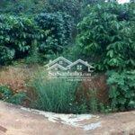 Đất Huyện Lâm Hà 1.000M2 Xã Đông Thanh