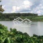 Cần Bán 64M Đất Mt Đường Nhựa View Hồ Tự Nhiên