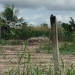 Đất Trường Lương Thế Vinh P8 Cmau Lộ 3.5M 10X39