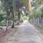 Đất Nền Có Thổ Cư Lộ Bờ Dừa Phú Nhuận