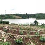 Đất Lộc An View Hồ, Có Cây Ăn Trái Đường Xe Hơi