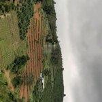 Bán đất Lộc Thành - Bảo Lộc, đất đẹp, vị trí tiềm năng