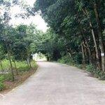 Bán Đất Vsip2 - Vĩnh Tân Dt343M2 Giá Chỉ 680Tr