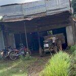 Nhà Tôi Còn 1 Miếng Đất Thổ Cu 100% Mạt Tiền QL 20, gần thị trấn Di Linh Lam Đồng