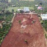 Đất Nền Nam Ban Lâm Đồng 750Tr/Nền/100M2/500M2