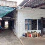 Kho Bãi Nhà Xưởng 200M2 Ngay Trần Hoàng Na