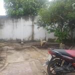 Cho Thuê Nhà Kiểu Biệt Thự Cổ Điển Rộng 400M2. Đường Nguyễn Văn Linh