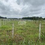 Đất Vườn Củ Chi 690M2 1Ty280 Sổ Hồng Riêng