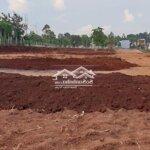 Đất Đầu Tư Hẻm C1 Tl8 Giá F0